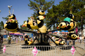 Bumble Bees - 4 Tickets